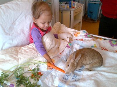 zieke kanjer op bed met haar konijn